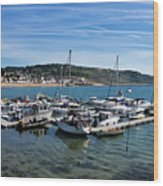 Outer Harbour - Lyme Regis Wood Print