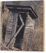 Outhouse3 Wood Print