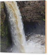 Outlet Falls Wood Print