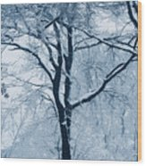 Outside My Window Wood Print