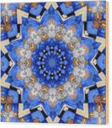 Ovarian Cancer Awareness Mandala Wood Print