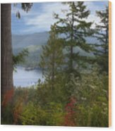 Over Burrard Inlet Wood Print by Barbara  White