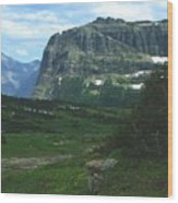 Over Logan's Pass Wood Print