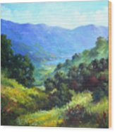 Over Looking Clearlake Wood Print