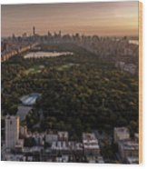 Over The City Central Park Wood Print