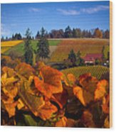 Over The Durant Vineyards Wood Print