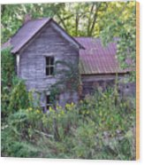 Overgrown Abandoned 1800 Farm House Wood Print
