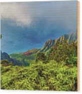 Overlook Wood Print
