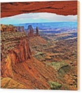 Overlooking Canyonlands National Park    Moab Utah Wood Print
