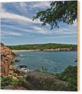 Overlooking Sand Beach Wood Print