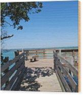 Overlooking Sarasota Bay Wood Print