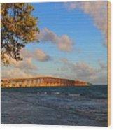 Overseas Highway Us 1 Wood Print