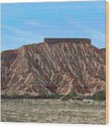 Overton Nevada Valley Of Fire  Wood Print