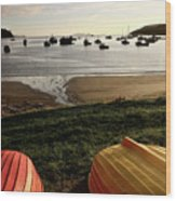 Overturned Boats On Shore Of Harbor Wood Print
