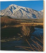 Owens River Valley Bishop Ca Wood Print