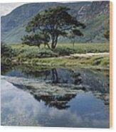 Owenveagh River, Glenveagh National Wood Print