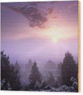 Owhyee Canyonlands Wood Print