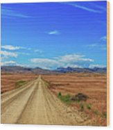 Owhyee Desert Wood Print