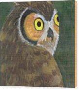 Owl 2009 Wood Print