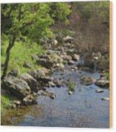 Owl Creek Wood Print
