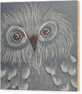 Owl In The Blue Wood Print by Ginny Youngblood