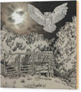 Owl In The Moonlight On Brush Mountain Wood Print