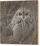 Owl In The Woods Wood Print