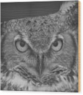 Owl Love  Wood Print