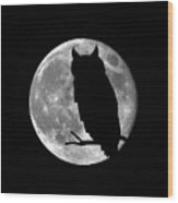 Owl Moon Wood Print