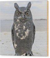 Owl On The Beach Wood Print