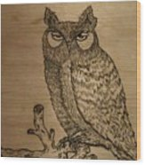 Owl Pyrography Wood Print