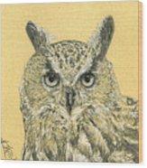 Owl Study Wood Print
