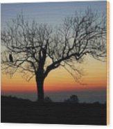 Owl Sunset Wood Print