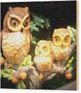 Owl Trio Wood Print