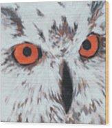 Owlish Eyes Wood Print