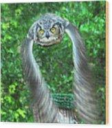 Owll In Flight Wood Print