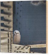 Owls And Trestles Wood Print