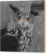 Owls Eye Wood Print