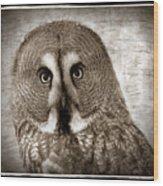 Owls Eyes -vintage Series Wood Print