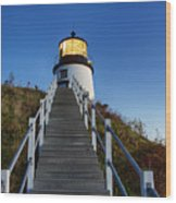 Owls Head Lighthouse Wood Print by John Greim