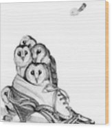 Owls In A Shoe Wood Print