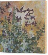 Oxalis Wood Print