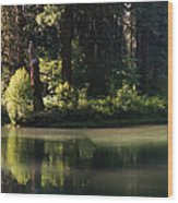 Oxbow Wood Print