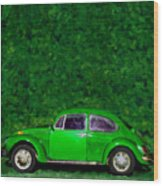 Oyama Bug Wood Print