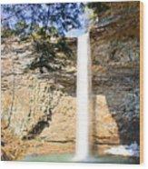 Ozone Falls Focus Wood Print