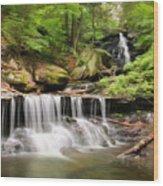 Ozone Falls Ricketts Glen Wood Print