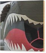 P-40 Warhawk - 2 Wood Print