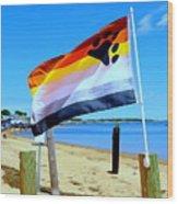 P Town Bear Flag Wood Print
