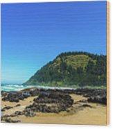 Pacific Beach Wood Print