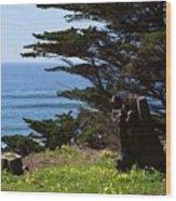 Pacific Beauty Wood Print